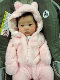 Hello! I'm a pink bear!