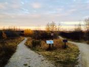 Douglas Fir Trail