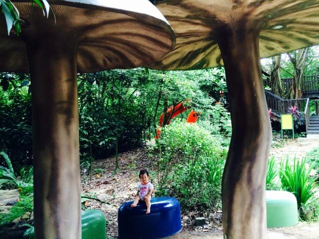 Mushroom shelter