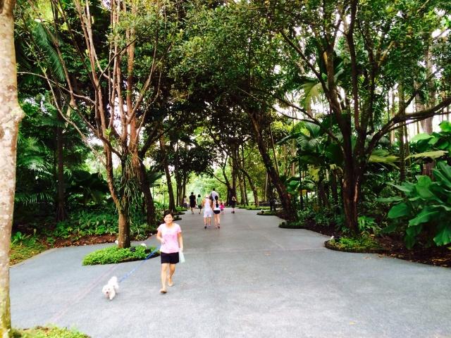 Singapore Botanic Gardens Visitor Centre