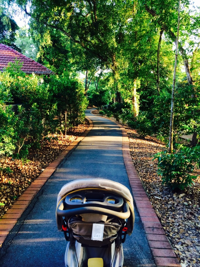 Near Red Brick Path