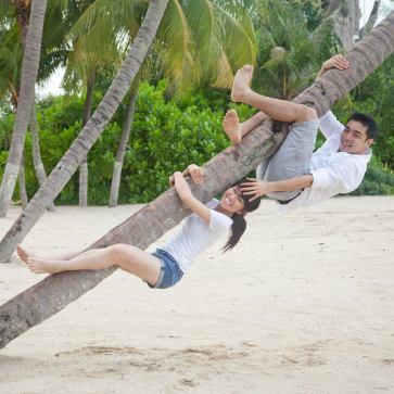 B&VA on the tree