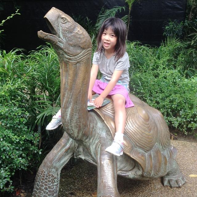 Daniella on the tortoise