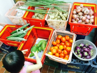 Little E picking vegetables at the Indian stall.