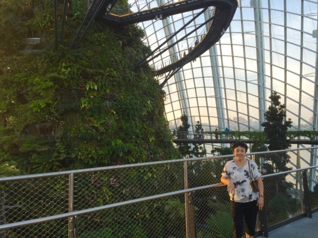 Mother at Cloud Forest
