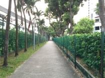 Morning run before church