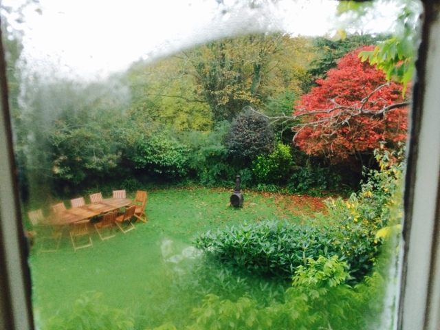 View of the garden from our bedroom window