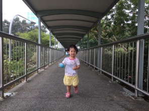 Serangoon bridge