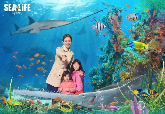SeaLife pic 2.jpg