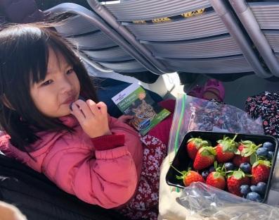 H enjoying berries
